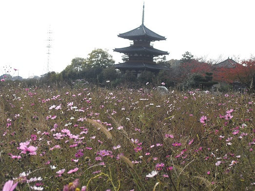 5 法起寺