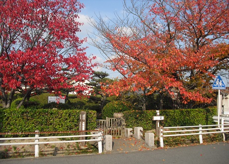 6 筒井順慶の墓1