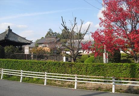 7 筒井順慶の墓2