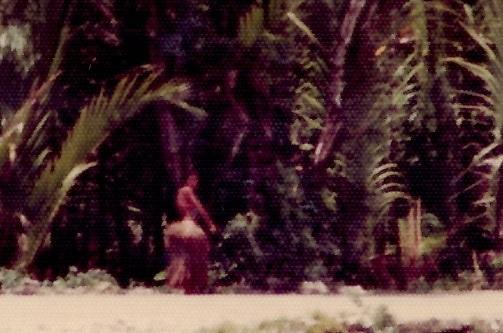 23 島民のジャンクルの生活2