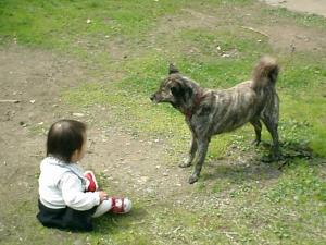大塩温泉 犬
