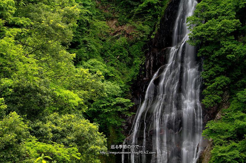 鱒返しの滝(鳥取県東伯郡赤碕町山川)