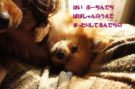 DSC09022_2.jpg