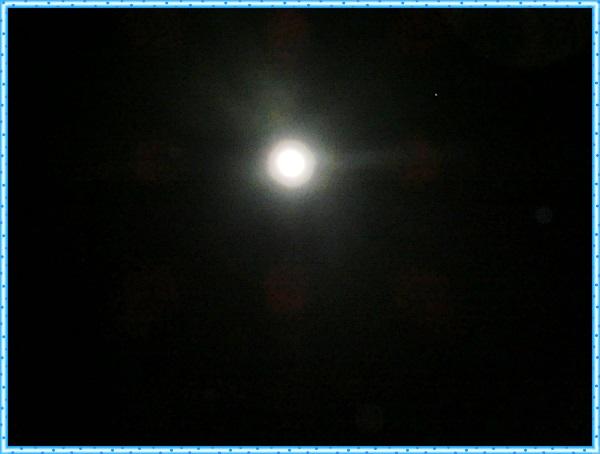 CIMG9704_20131224210644419.jpg