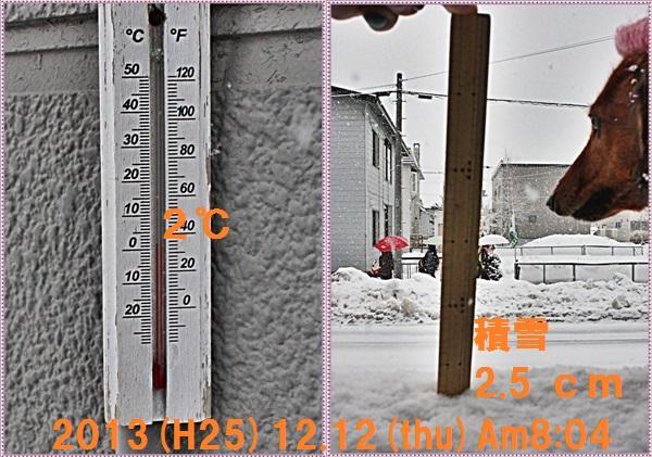 IMG_0015a-tile.jpg