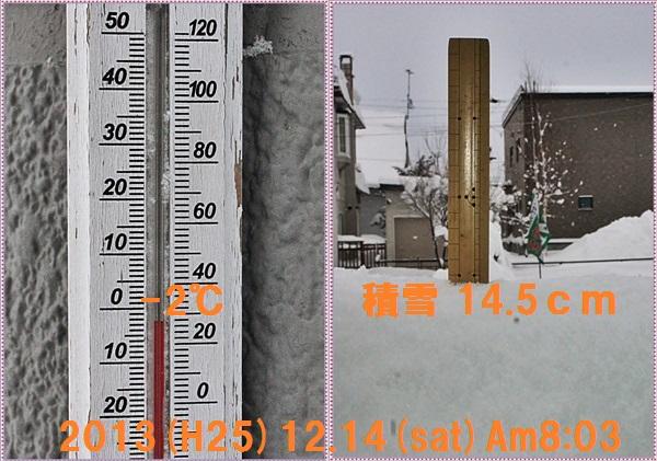 IMG_0054-tile.jpg