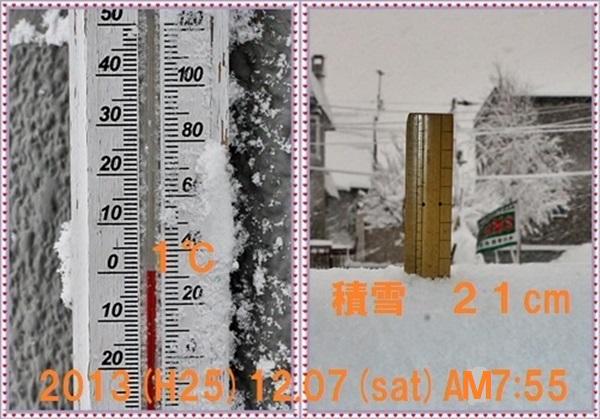 IMG_0095-tileb.jpg