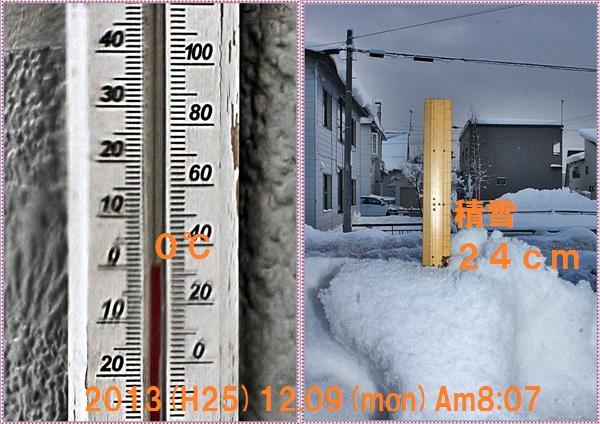 IMG_0206-tile_20131220015726536.jpg