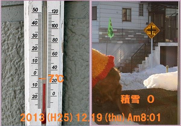 IMG_0382-tile.jpg
