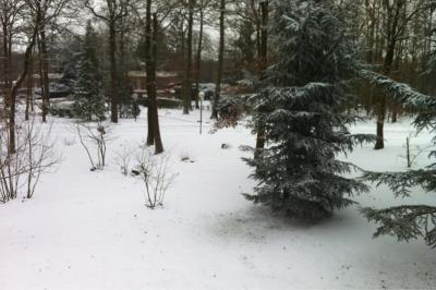 部屋のベランダからみた雪景色
