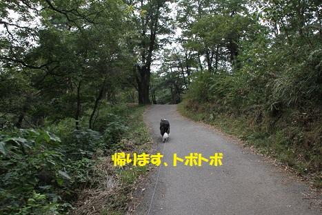IMG_4439.jpg