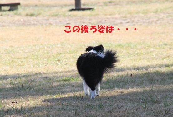 IMG_4859.jpg