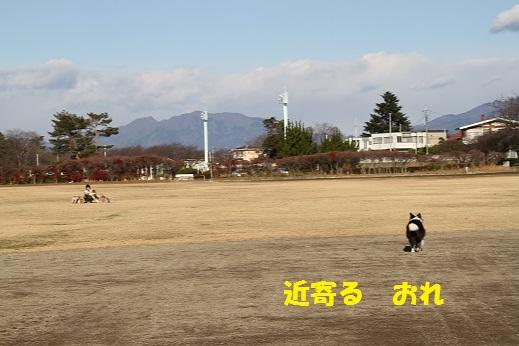 IMG_5034.jpg