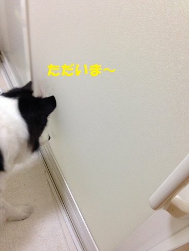 IMG_6965.jpg
