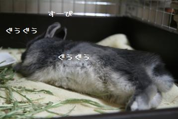 20110220_05.jpg