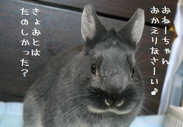 20110227_01.jpg