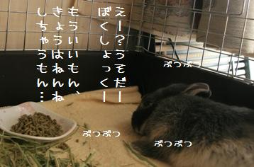 20110227_07.jpg