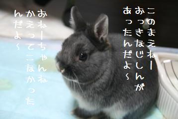 20110319_01.jpg