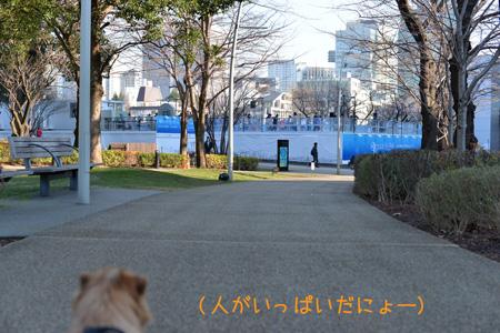 20140112_08.jpg