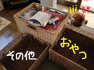 CIMG3288.jpg