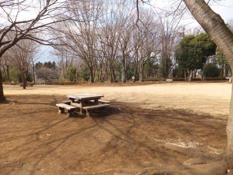 忠生公園8