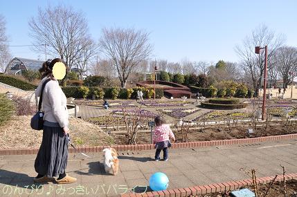 chikoyamakoen02.jpg