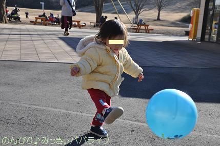 shinrinkoen20130103.jpg