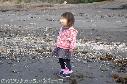tateyama201302017.jpg