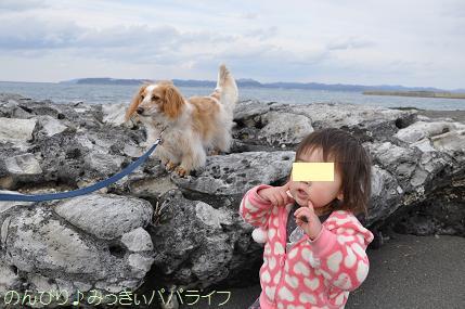 tateyama201302020.jpg