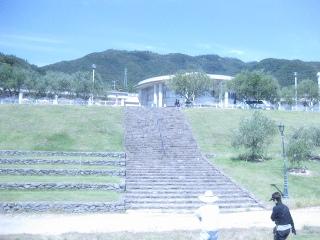オリーブ公園7