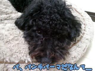 18_23_55-picsay.jpg