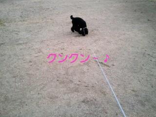 37_12-picsay.jpg
