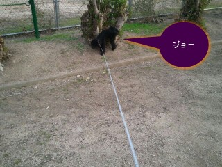 38_27-picsay.jpg