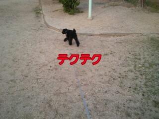 8_38-picsay.jpg