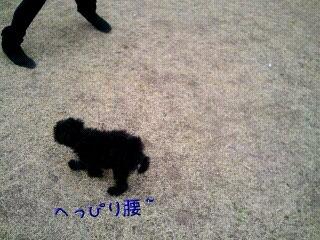 Mar_23_2011_580.jpg