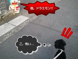 _22_42-picsay.jpg