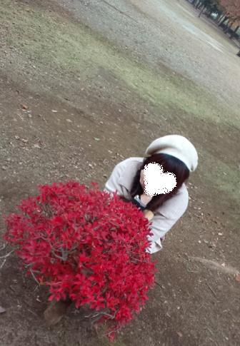 2011.11.いつだっけ? 紅葉ピクニック 16