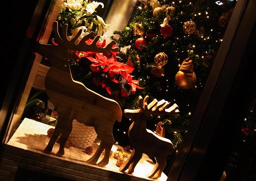 2011.12.24分 クリスマス都内ブラブラw 8