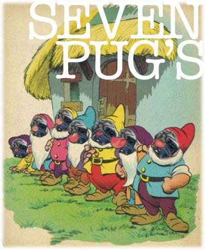 7人のパグ