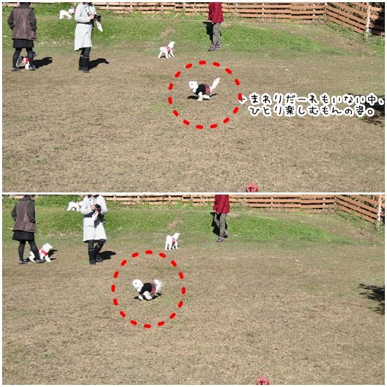 mon_20111225222237.jpg