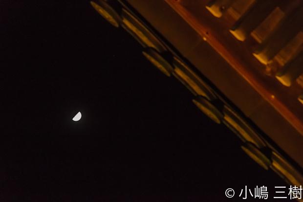 2012夜桜コンサート0223