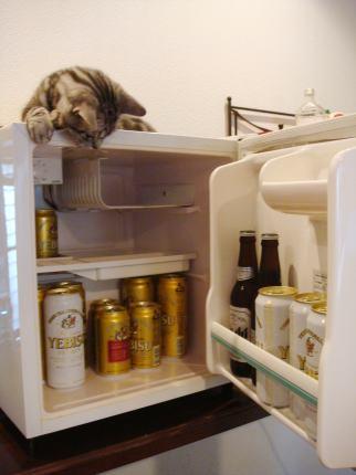 ビールとびー