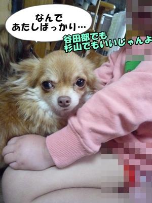 坪倉P1260688