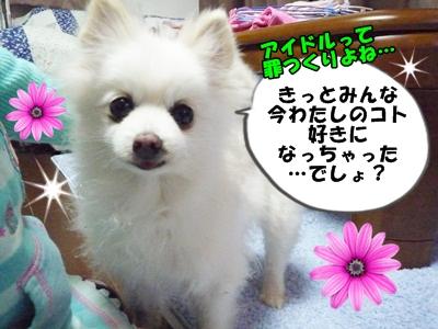 ぴーすけP1260936