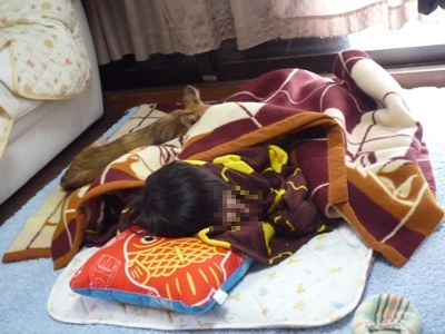 睡眠P1270483