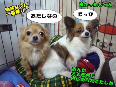 谷田部P1270561