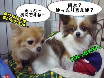 谷田部P1270558