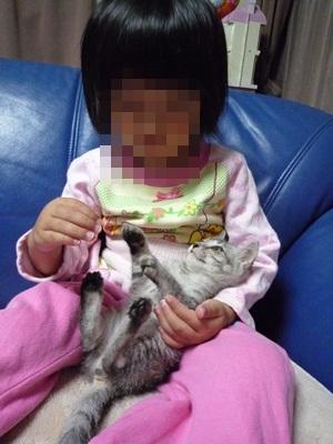 猫P1320971