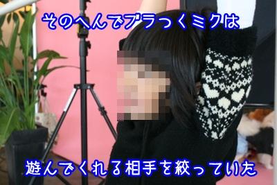 譲渡会IMG_2210