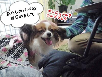 しょこちゃんP1330501
